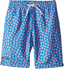 b26d8deb61 Boy's Cotton Swimwear + FREE SHIPPING | Clothing | Zappos.com