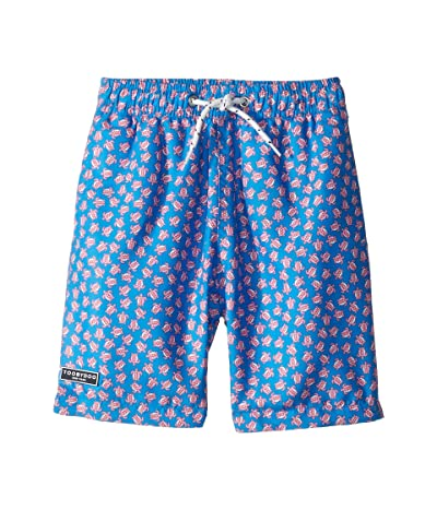 Toobydoo Classic Swim Shorts (Infant/Toddler/Little Kids/Big Kids) (Turtle Print) Boy