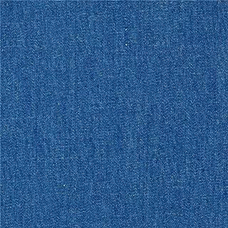 TELIO Light Blue 4.8 oz Denim Chambray Fabric by The Yard