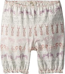 Simba Shorts (Infant)