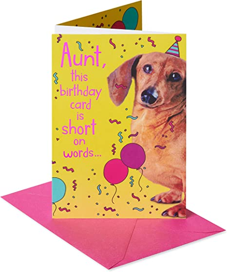 American Greetings Birthday Card for Aunt (Weiner Dog)