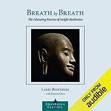 Breath By Breath Larry Rosenberg