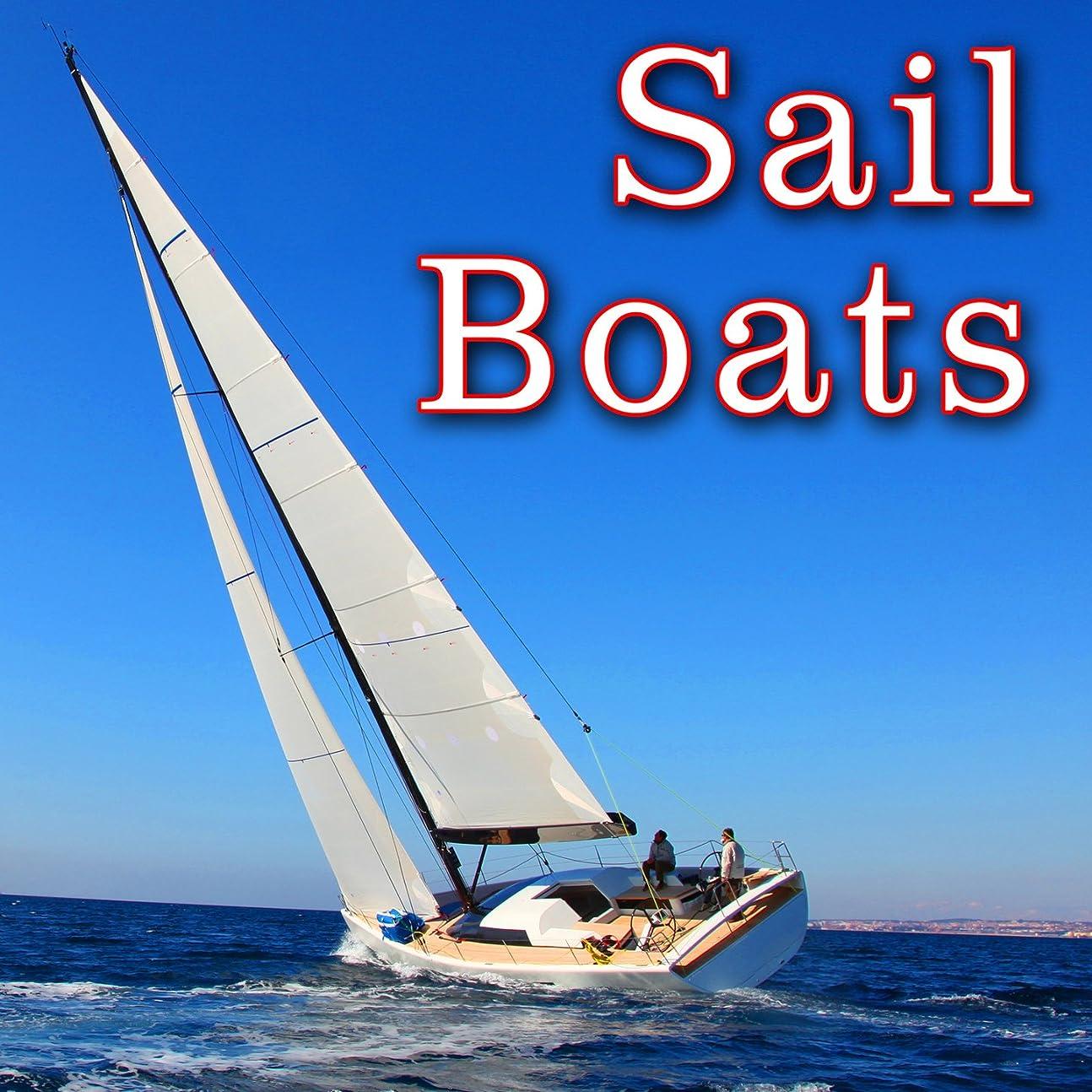 性能甥荒涼としたThree Masted Schooner, On Board: Heavy Wind Through Sails and Rigging with Wake Splash & Wood Creaks