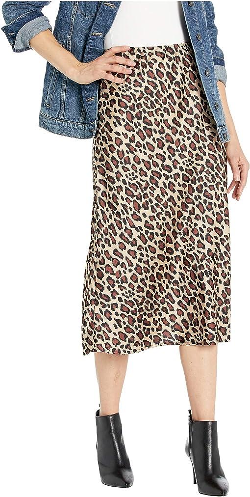 Cheetah Fever