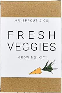 Indoor Garden Kit with Vegetable Seeds for Planting Home Garden - Seed Starter Kit In Kids Gardening Set | Plant Broccoli Carrot Tomato Zucchini To Grow Sprouts | Germination Kit Tools - By Mr Sprout