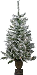 Northlight 3.5' Pre-Lit Potted Flocked Pine Artificial Christmas Tree - Clear Lights