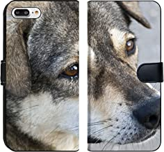 MSD Premium Phone Case Designed for iPhone 7 Plus and iPhone 8 Plus Flip Fabric Wallet Case Image ID: 7594362 This is a Dog Thailand at Have The Eyes of Food Wait from a Perso