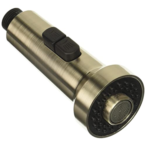 Ordinaire Danze DA523441NBN Spray Head For Pre Rinse Kitchen Faucet With Check Valve,  2.2 GPM