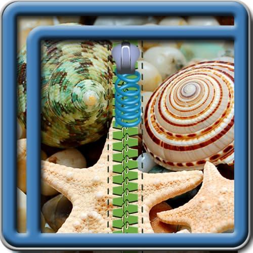 Zipper Lock Screen Seashells Arkansas