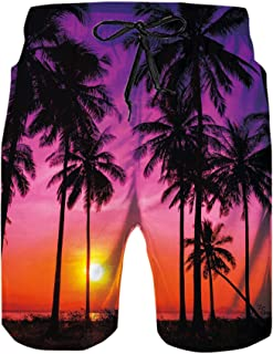 N \ A 3D Graphic Print Mens Swim Trunks Quick Dry Printed Beach Shorts Summer Boardshorts with Mesh Lining