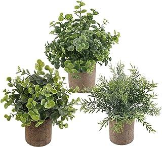 Lot de 3 mini plantes artificielles en pot - Plantes artificielles - Pour maison, bureau, cuisine, salle de bain, jardin