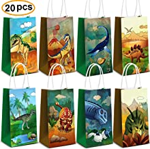 Dinosaur Party Supplies,Dinosaur Party Bags For Dinosaur Birthday Party Supplies Dinosaur Party Favors Set Of 20