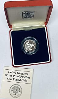 silver proof one pound coin