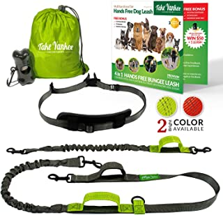 belt for walking multiple dogs