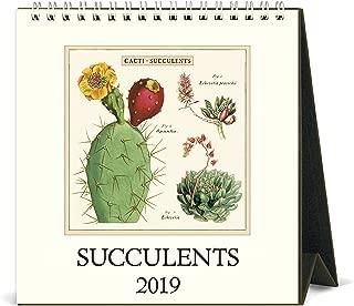 Best succulent desk calendar Reviews