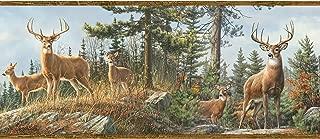 Chesapeake 3118-48463B Whitetail Crest Multicolor Forest Border Wallpaper,