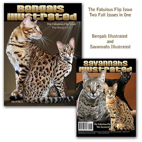 Savannah Cats: Amazon com