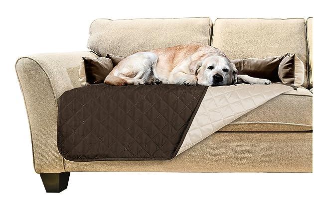Best sofas for dog   Amazon.com