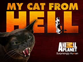 My Cat From Hell Season 1