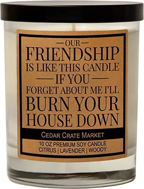 This Funny Friendship Candle