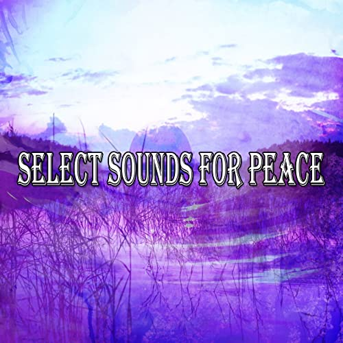 Soothing Symbols Of Sanctity by Zen Music Garden on Amazon Music
