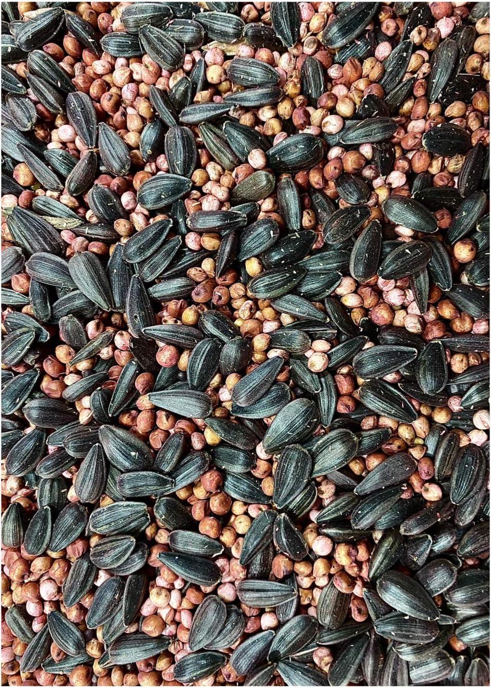 25lb Food Plot Seed Mix Red Grain Peredovik 返品交換不可 Sorghum Sunflowers ランキング総合1位