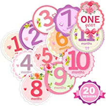 First Year Monthly and Holiday Milestone Stickers for Baby Girls, by TurtleSurfers