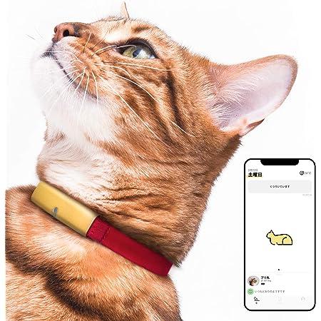 Catlog 【月額料金プラン】食事や運動など愛猫の健康変化に気付けるスマート首輪 見守り 留守番 おしゃれ スタイリッシュ 軽い セーフティバックル iPhone & Android対応 (L, 猫鈴ゴールド×レッド)