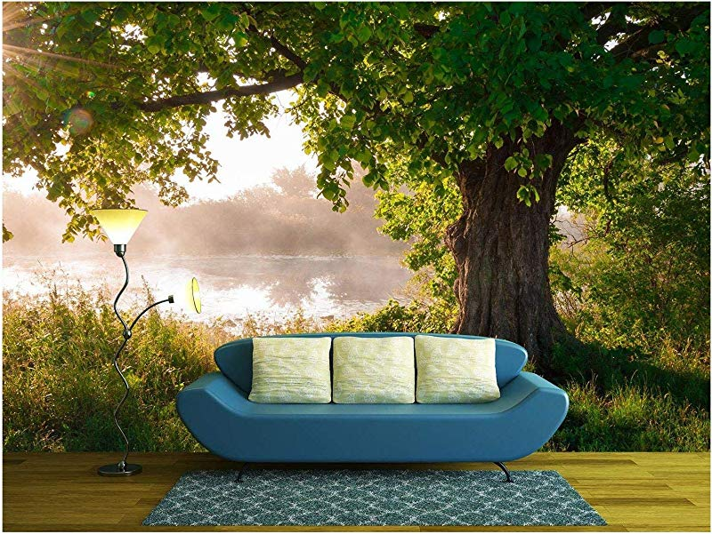 Wall26 Oak Tree In Full Leaf In Summer Standing Alone Removable Wall Mural Self Adhesive Large Wallpaper 100x144 Inches