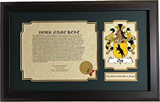 Ott - Coat of Arms and Last Name History, 14x22 Inches Matted and Framed