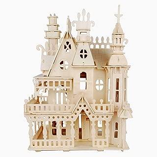 NWFashion Wooden Dream Dollhouse DIY Kits Miniature Doll House (Dream House)