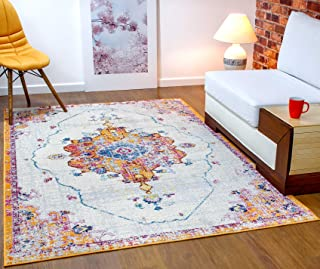 Antep Rugs Elite Collection Bohemian Distressed (DSG22) Indoor Area Rug (Terra, 4' x 6')