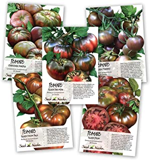 Best black tomato seeds Reviews