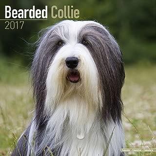 Bearded Collie Calendar 2017 - Dog Breed Calendars - 2016 - 2017 wall calendars - 16 Month by Avonside