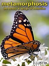 metamorphosis butterfly movie