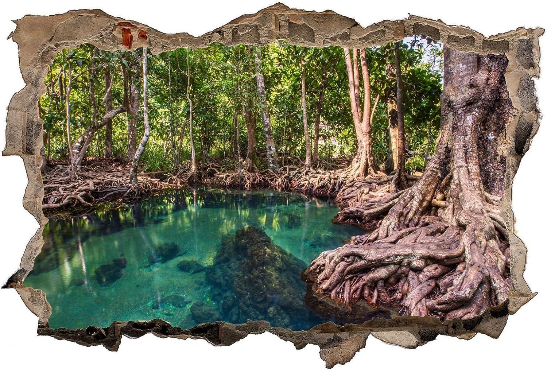 Amazonas Brasilien Wald Dschungel See Wandtattoo Wandsticker Wandsticker Wandsticker Wandaufkleber D0400 Größe 120 cm x 180 cm B07BSMVN4V 8bccf2