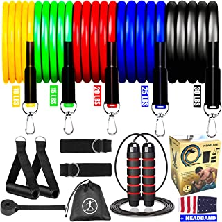 FITWELLBE 11pcs Resistance Bands Set + Jump Rope, Exercise Bands Set with Door Anchor, Ankle Straps, Foam Handles, carry b...