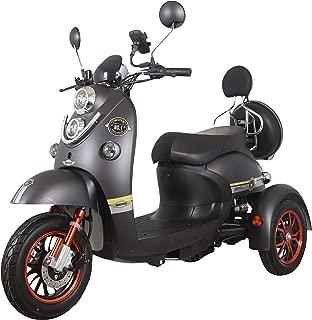 Green Power Scooter electrico de Movilidad Moto Para Personas Mayores   Recreativo adulto 3 ruedas hasta 25 km/h 60V 100AH 600W