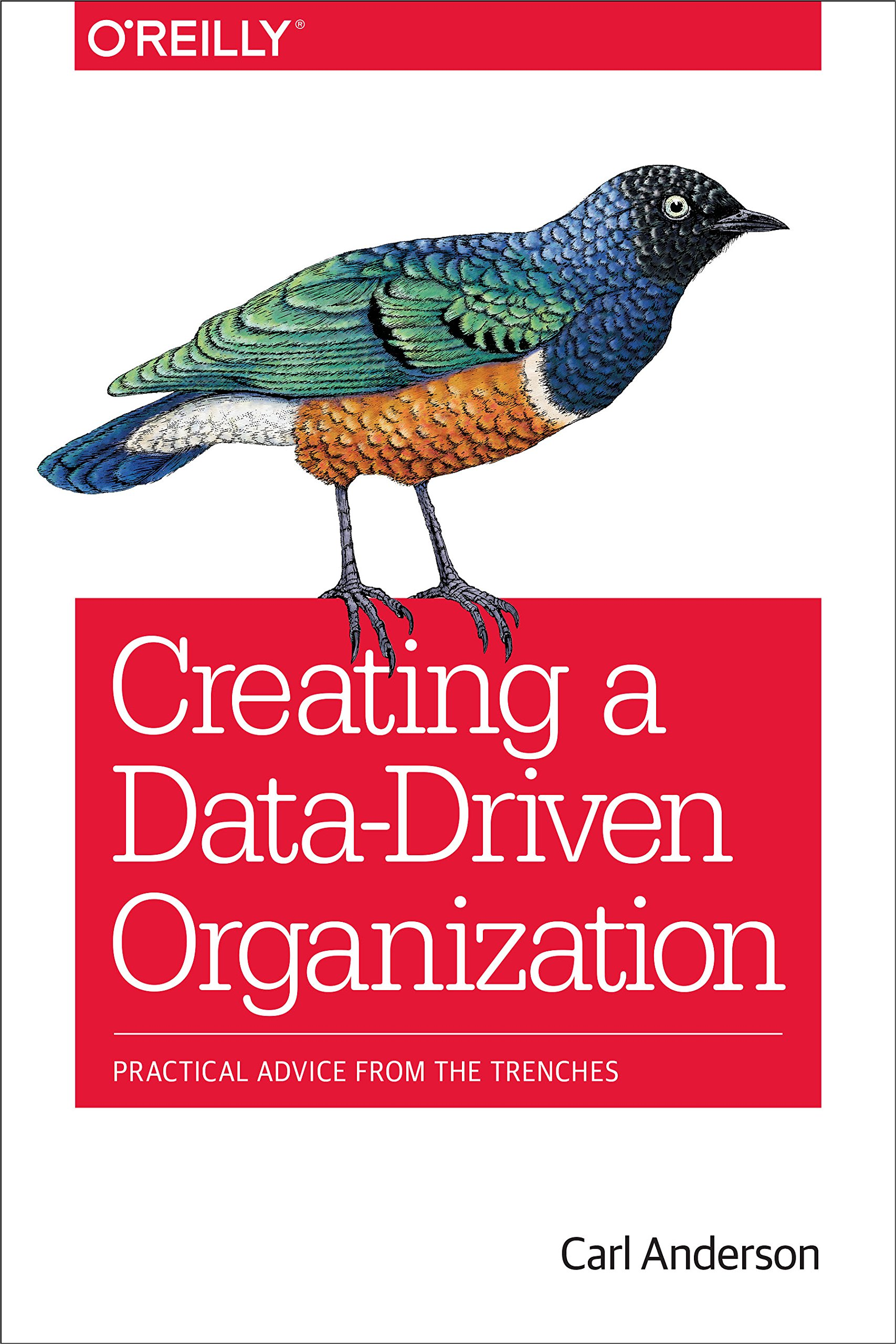 Download Creating a Data Driven Organization: Practical Advice from the Trenches
