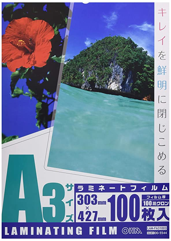 たっぷり真っ逆さまチャンピオンOHM 100ミクロンラミネーターフィルム100枚 A3 LAM-FA31003