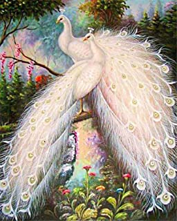 EOBROMD DIY 5D Diamond Painting by Number Kits, Full Drill White Peacocks Crystal Rhinestone Embroidery Pictures Arts Craf...
