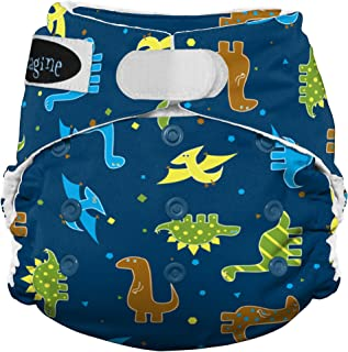 Imagine Baby Products Stay Dry All-in-One Hook and Loop Diaper, Rawr