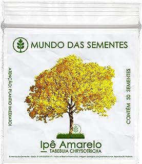50 Sementes de Ipê Amarelo Dourado - Tabebuia Chrysotricha