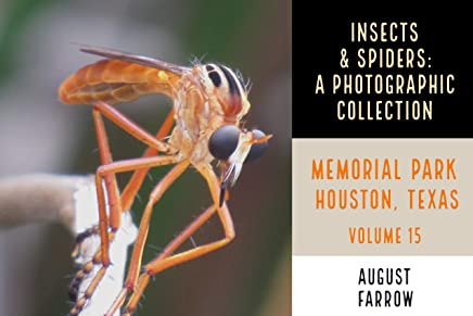 Insects & Arachnids: A Photographic Collection: Memorial Park: Houston Texas - Volume 15 (Arthropods of Memorial Park) (English Edition)