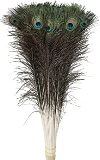 Peacock feathers, wanjin 25 Pcs Dyeing feather Long pole 28-30 inches(Natural)