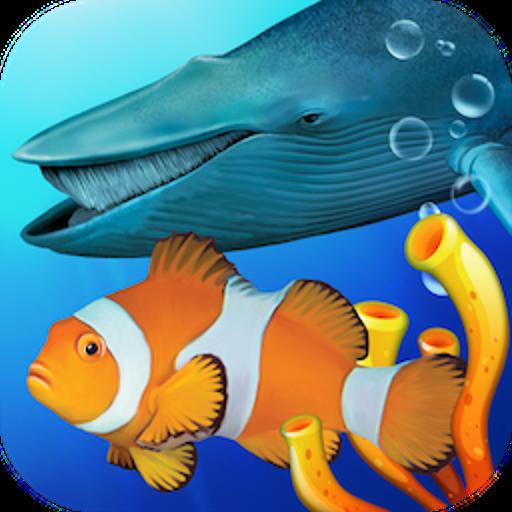 Best Schooling Aquarium Fish