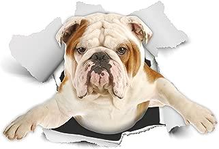 Winston & Bear 3D犬ステッカー - 2パック - 壁のために英国のブルドッグステッカー、冷蔵庫、トイレ、もっと英語ブルドッグ