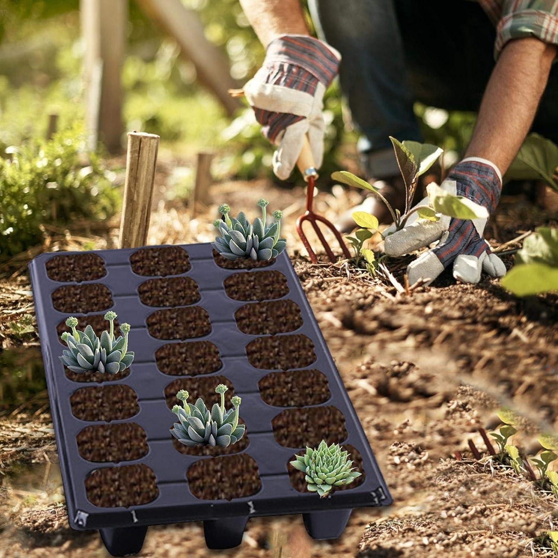 Sweety Plateau de semis de Grille de 21 Trous Plug de Plantation de l/égumes Succulents Culture du Jardin , Kit de d/émarrage de semis Kit de Plateaux de Germination des Plantes