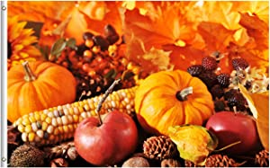 Pickako Thanksgiving Autumn Fall Harvest Pumpkin Apples Nuts Maize Berries Leaves 3x5 Foot Flag, Double Stitched 3 x 5 Ft Flags with Brass Grommets for Home House Outdoor Indoor Decor
