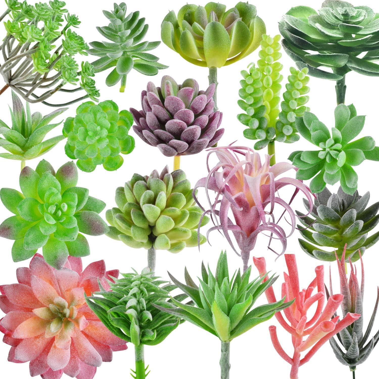 Dandevo 18 Pcs Faux Succulents Unpotted Artificial Succulents Bulk Plastic Succulent Plants Realistic Silk Fake Succulents Unpotted Stems Picks Assorted Plant for Crafts Home Decor